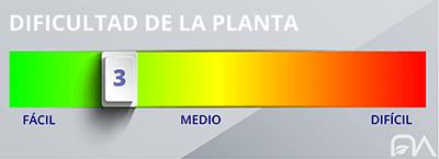 Grado de dificultad de las plantas nivel 3