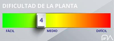 Grado de dificultad de las plantas nivel 4
