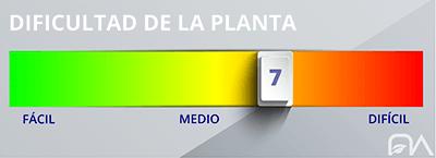Grado de dificultad de las plantas nivel 7