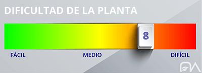 Grado de dificultad de las plantas nivel 8