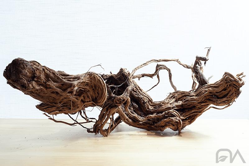 Madera MILLENIAL TREE para acuarios