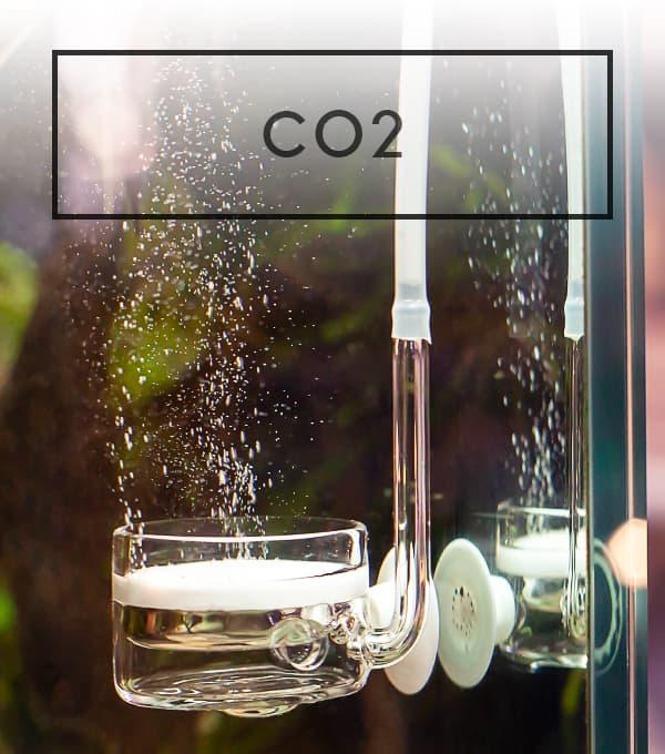 Difusores de CO2 de la marca ADA