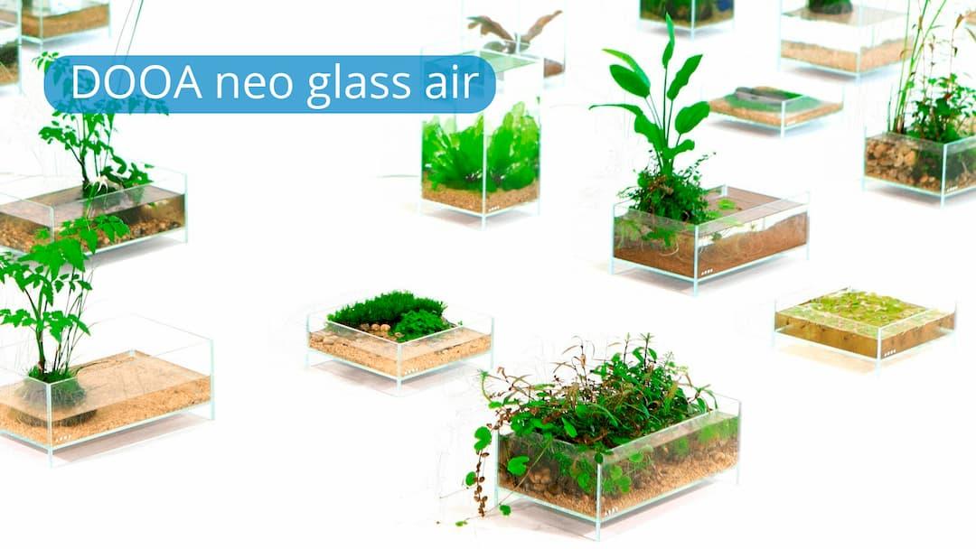 DOOA NEO GLASS AIR SERIE