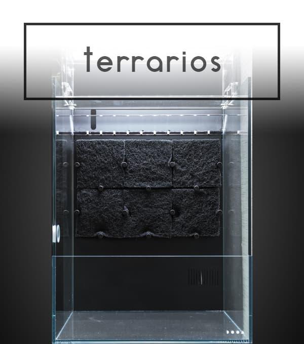 DOOA TERRARIOS