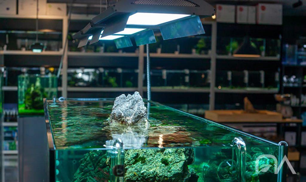 Iluminación del acuario plantado: Pantallas ADA iluminando un acuario de la NAscapers Gallery