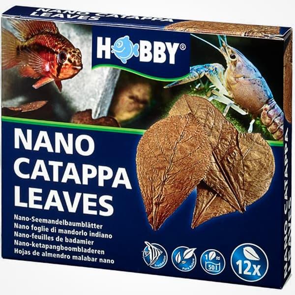 NANO CATAPPA LEAVES