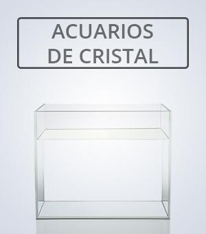 ACUARIOS DE CRISTAL - ADA | NAscapers