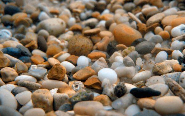 Gravas y arenas para acuarios de agua dulce