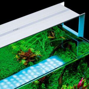Iluminación de acuarios