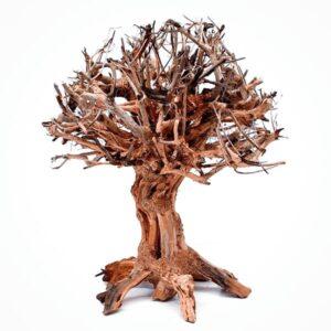 Mammoth bonsai M para acuarios de agua dulce.