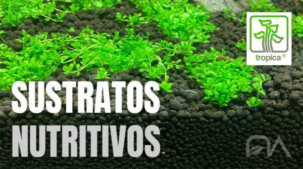 Sustratos nutritivos TROPICA para acuarios plantados de venta y en oferta en tu tienda de aquascaping online NASCAPERS.
