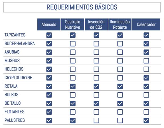 Requerimientos básicos que necesita tu acuario en función del tipo de planta