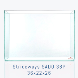 ACUARIO STRIDEWAYS SADO 36P
