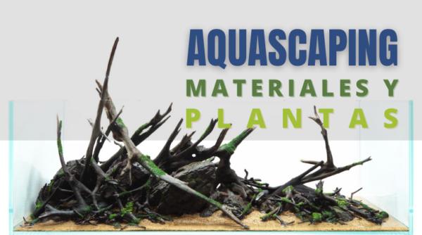 AQUASCAPING: precio, materiales y plantas en función del tamaño y los requerimientos del tanque