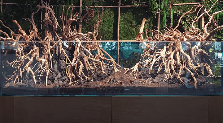 materiales naturales para tu acuario plantado